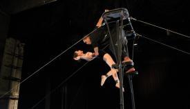 Zaperoco Circus's picture