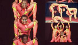 Groupcontortion's picture